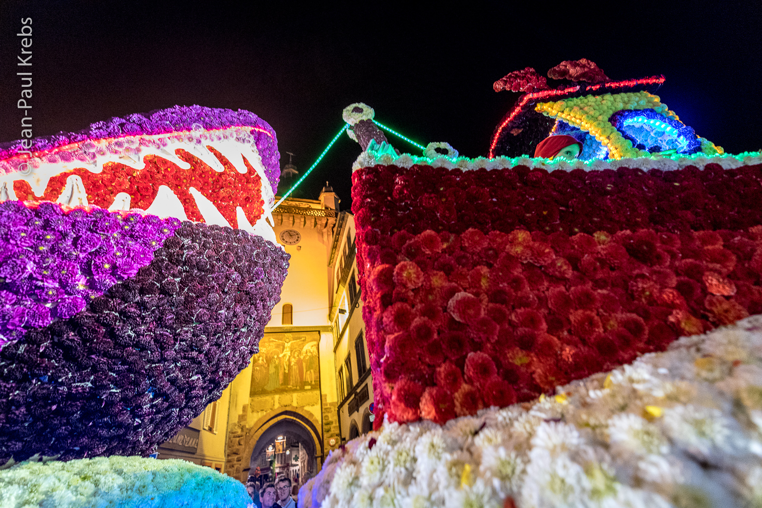 fleurs \u2013 Bons baisers du Rhin Supérieur