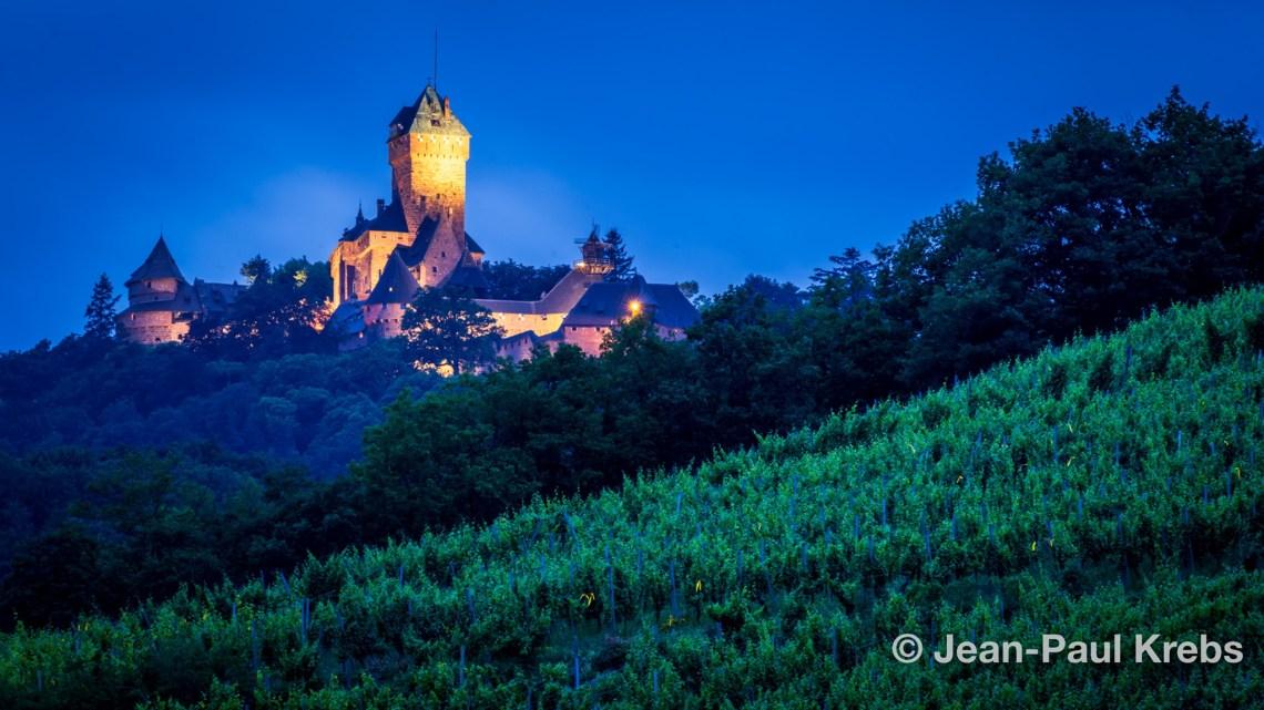 Le célèbre chateau du Haut-Koenigsbourg en Alsace