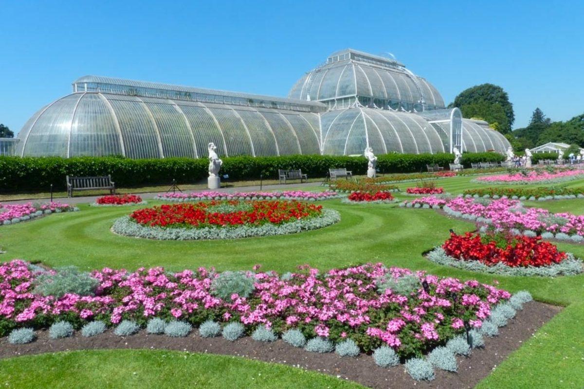 kew gardens magnifique jardin