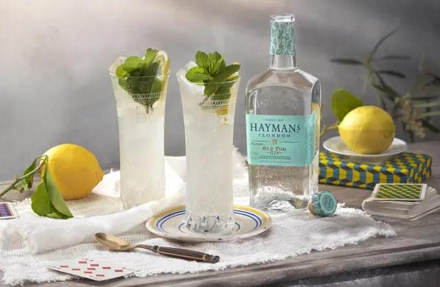 distillerie-gin-haymans