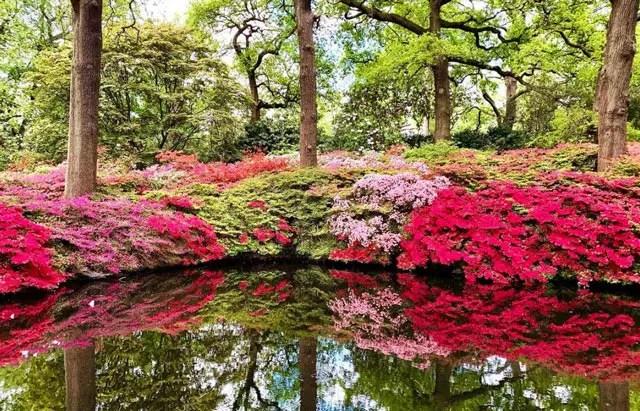 Isabella-plantation-richmond