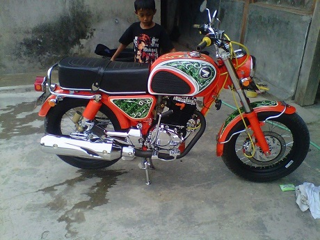 CB Bermesin Tiger