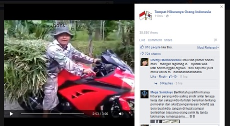 Rider Ninja Penggembala Sapi