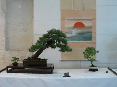 2010 -expo saint remi - 038