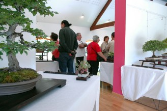 2011 -expo-parc-riviere - 008