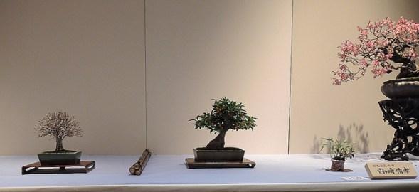 Kokufu Ten 2013 JS (59)