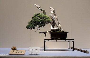 Kokufu Ten 2013 JS (60)