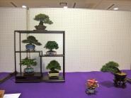 Koujitukai _Tokujyukai joint exhibition (5)