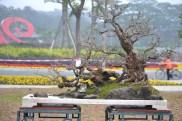 Guangzhou penjingi exposition 093