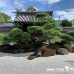 [日本庭園]觀智院(kanchiin house)