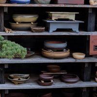 Bonsai skåle (Bonsai pots)