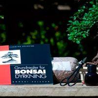 Bonsai begynder-sæt (Bonsai starter Kit)