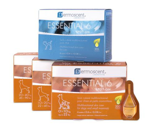 Echantillon shampoing animaux Dermoscent