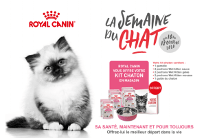 Gratuit : un kit chaton Royal Canin sur simple visite