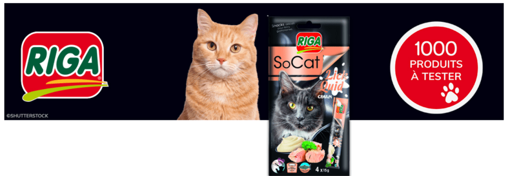 Lick Quid Snack pour chats