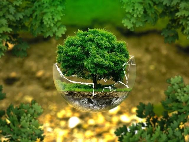 l'écologie pour tous