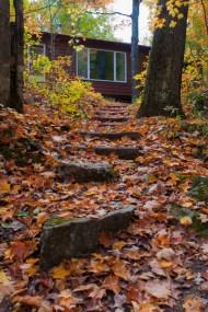 Les marches d'automne