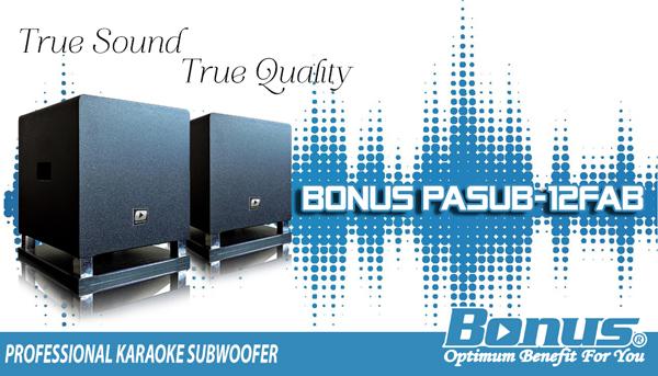 Subwoofer karaoke Bonus PASUB-12FAB