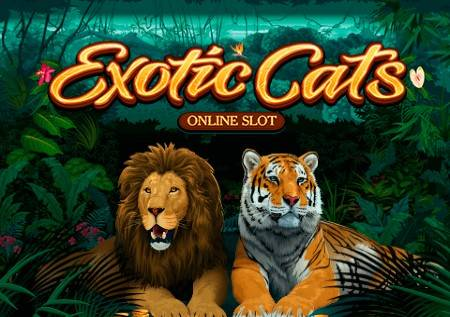 Exotic Cats – divlje mačke i ljepotica iz snova!
