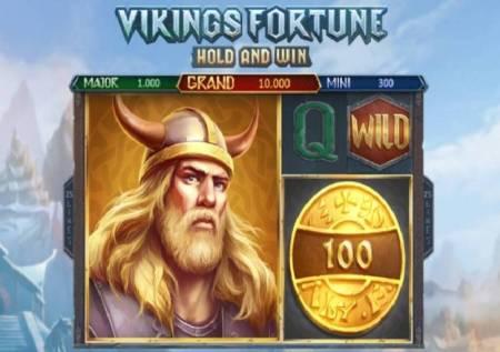 Vikings Fortune Hold and Win – ratnici Vikinzi