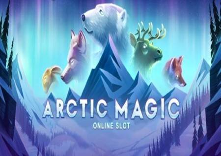Arctic Magic – neodoljiva arktička čarolija!