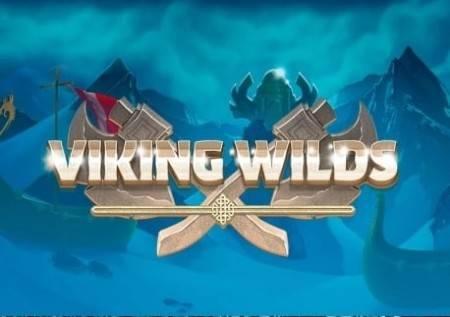 Viking Wilds– kazino avantura sa sjajnim bonusima!
