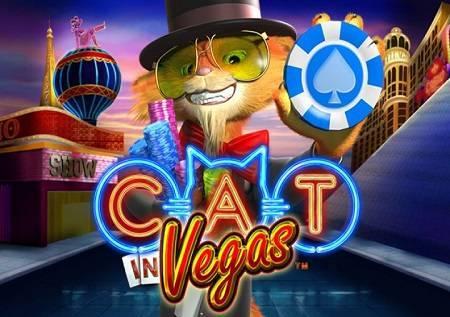 Cat in Vegas – provod kao iz snova!