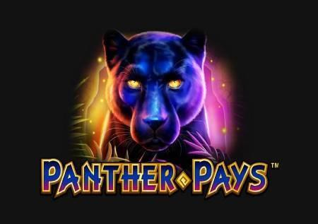 Panther Pays – istražite džunglu!