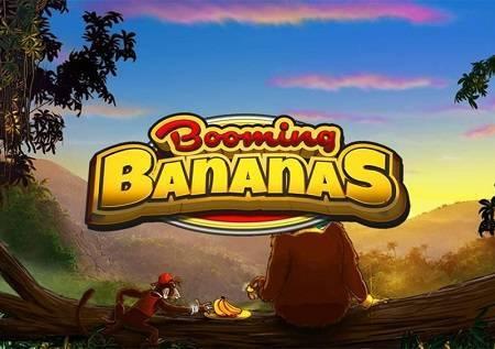 Booming Bananas – prava mala oaza, sa odličnim bonusima!