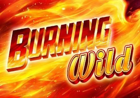 Burning Wild – džokeri donose zabavu!
