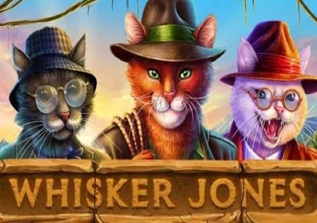 Whisker Jones – uz pomoć mačaka do sjajnih bonusa!