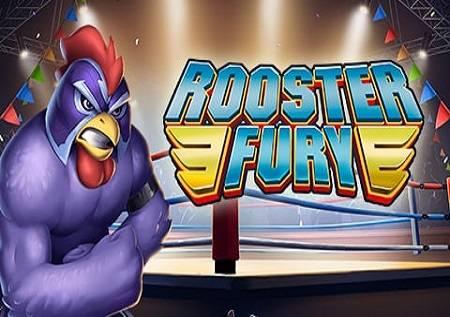 Rooster Fury – borba pijetlova!