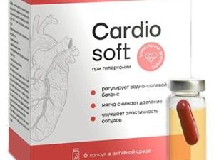 Cardiosoft купить