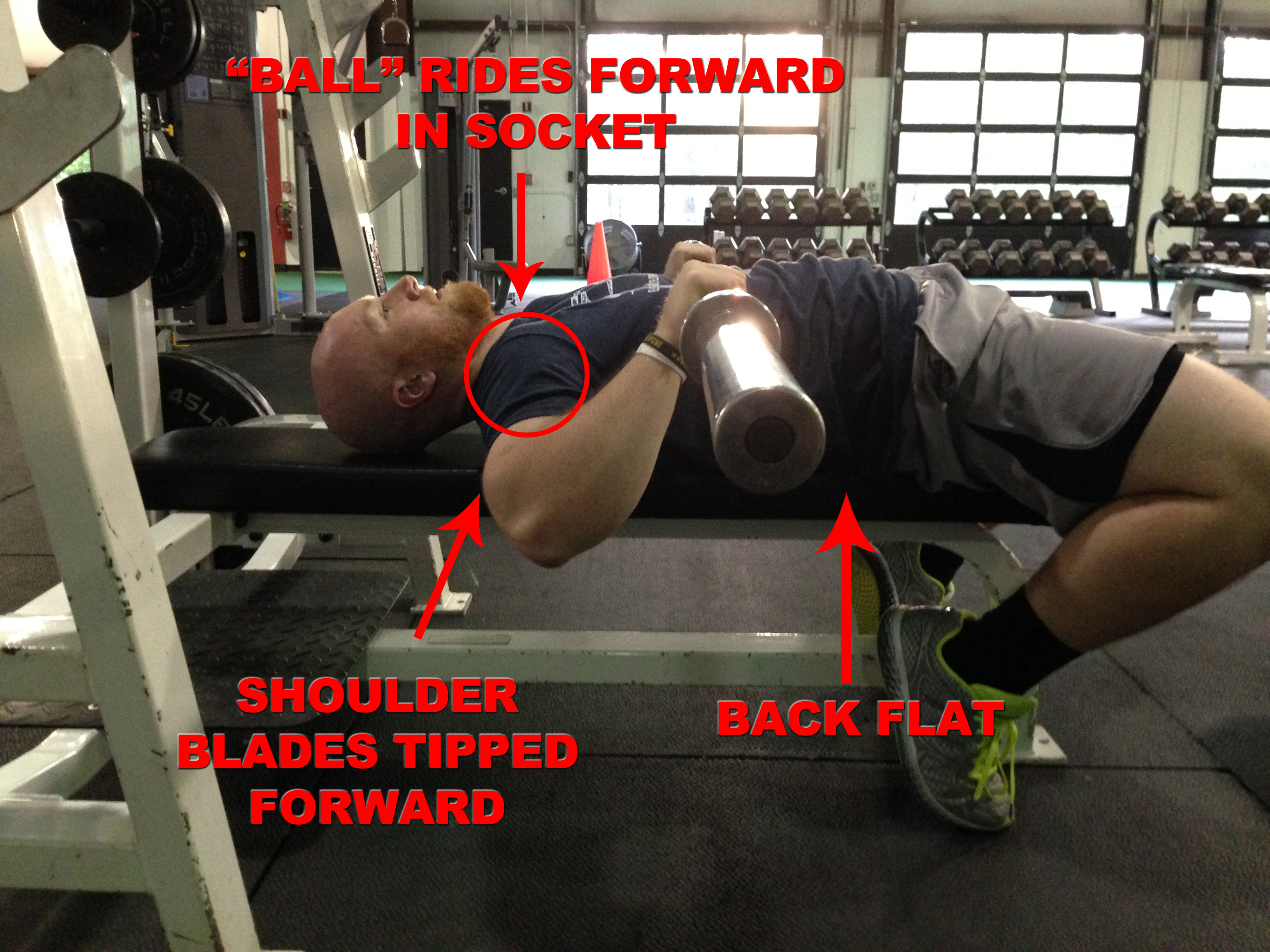The Bench Press Arch: 4 Reasons Why You SHOULD Use It - BONVEC ...