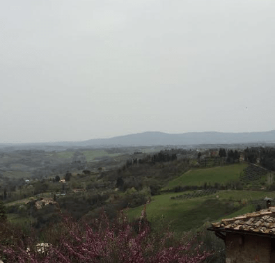 View from the top of San Gimignano - Photo by: Anna Luisa Van Haute