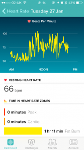 Fitbit Heart Rate Tracking