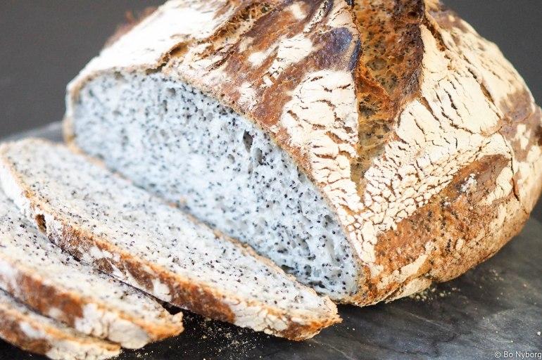 Jeg elsker brød og jeg elsker ting som er enkelt. Eltefritt brød er derfor en soleklar vinner for meg. Dette brødet inneholder masse valmuefrø.