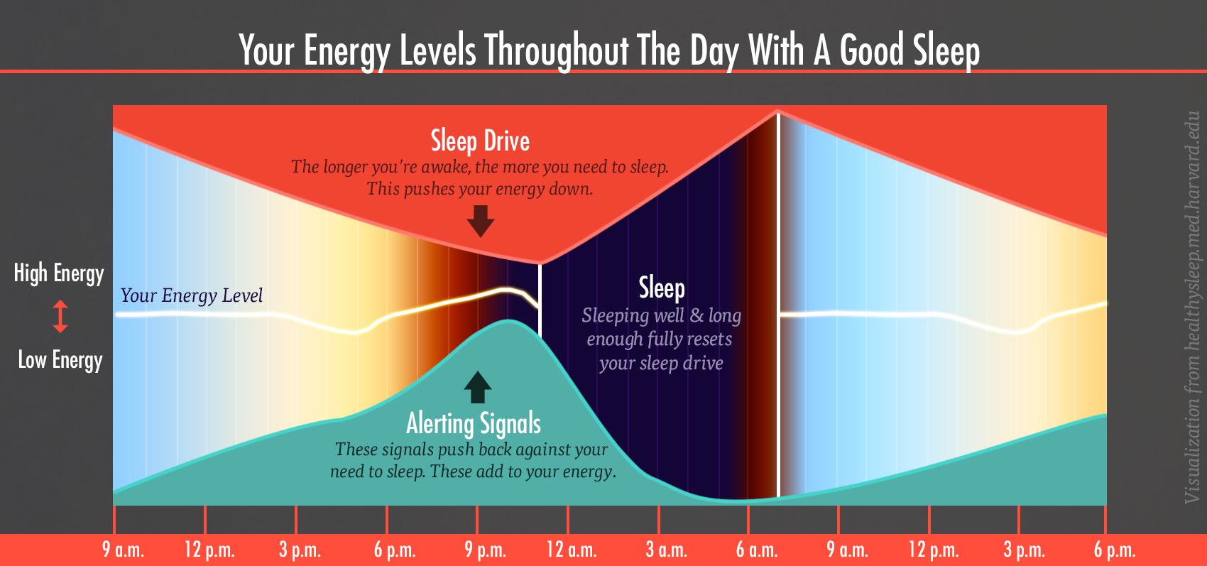 energy-levels-sleep-drive-alert-chart-1-bony-bombshell