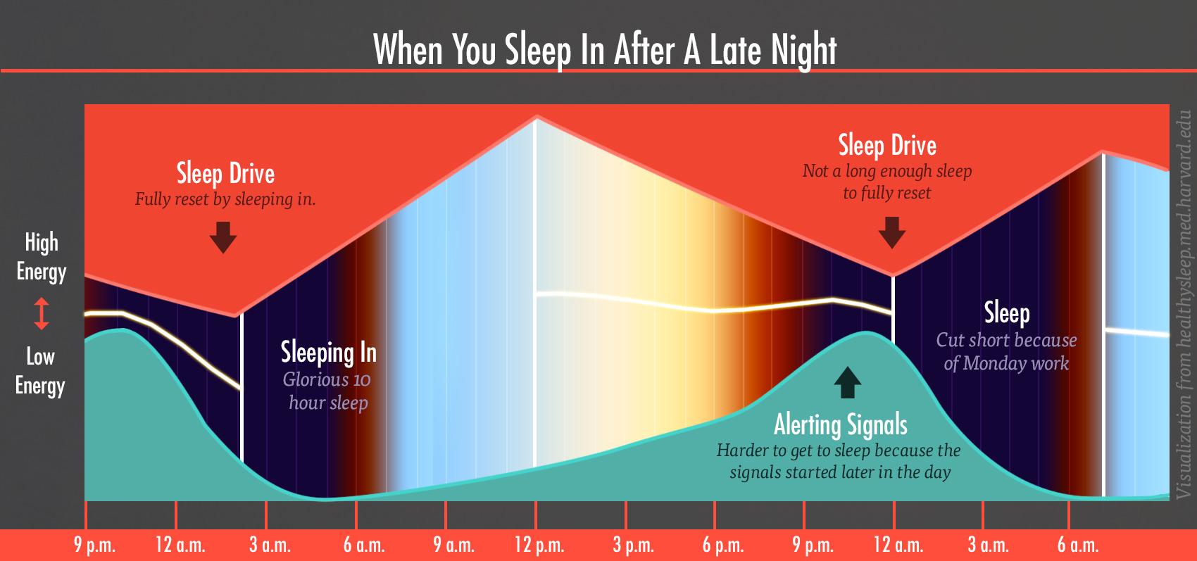 energy-levels-sleep-drive-alert-chart-3-bony-bombshell