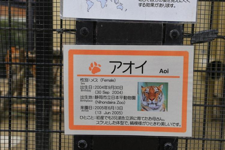 京都 動物園 (15 - 78)