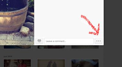 Instagram-voorbeeld2