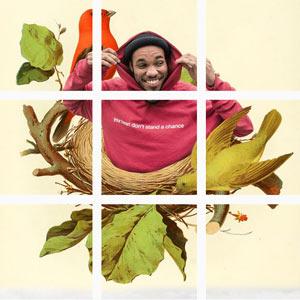 Met Planoly kun je je grid van Instagram mooi verdelen. Dit is een voorbeeld van Anderson Paak.