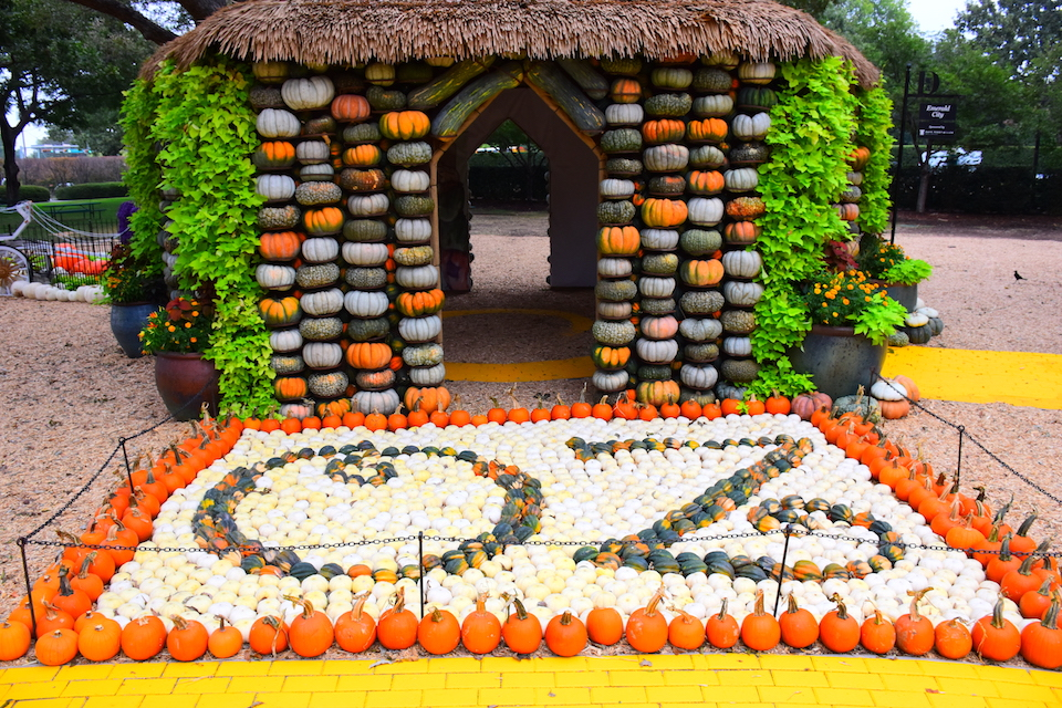 Celebrate Fall at the Dallas Arboretum