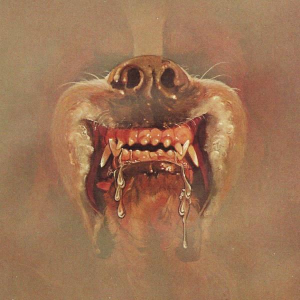 Couverture du roman Cujo de Stephen King