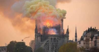Le pari de Notre-Dame