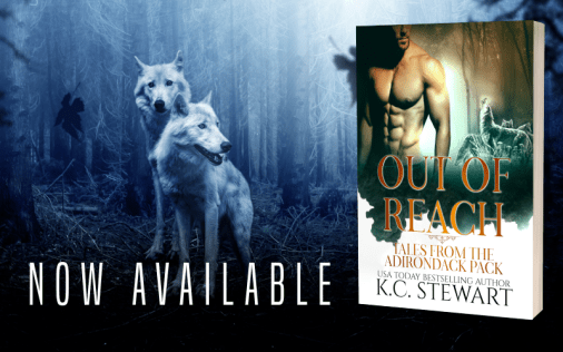 KC Stewart - Promo Graphics - Adirondack Anthology - Out Of Reach - 1
