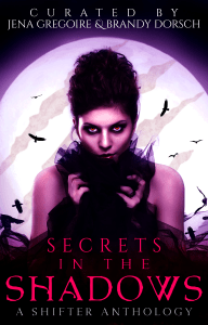 Book Cover: Secrets in the Shadows