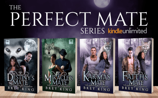 Promo Graphic - The Perfect Mate Series by Brey King - 1