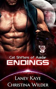 Book Cover: Endings