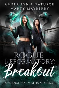 Book Cover: Rogue Reformatory: Breakout